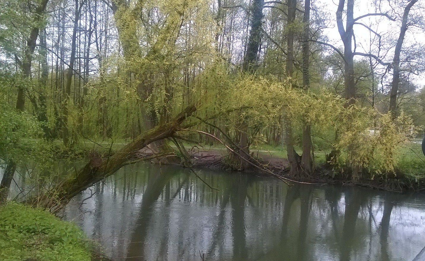 Fluss des Lebens ruhig Ruheort Entspannung