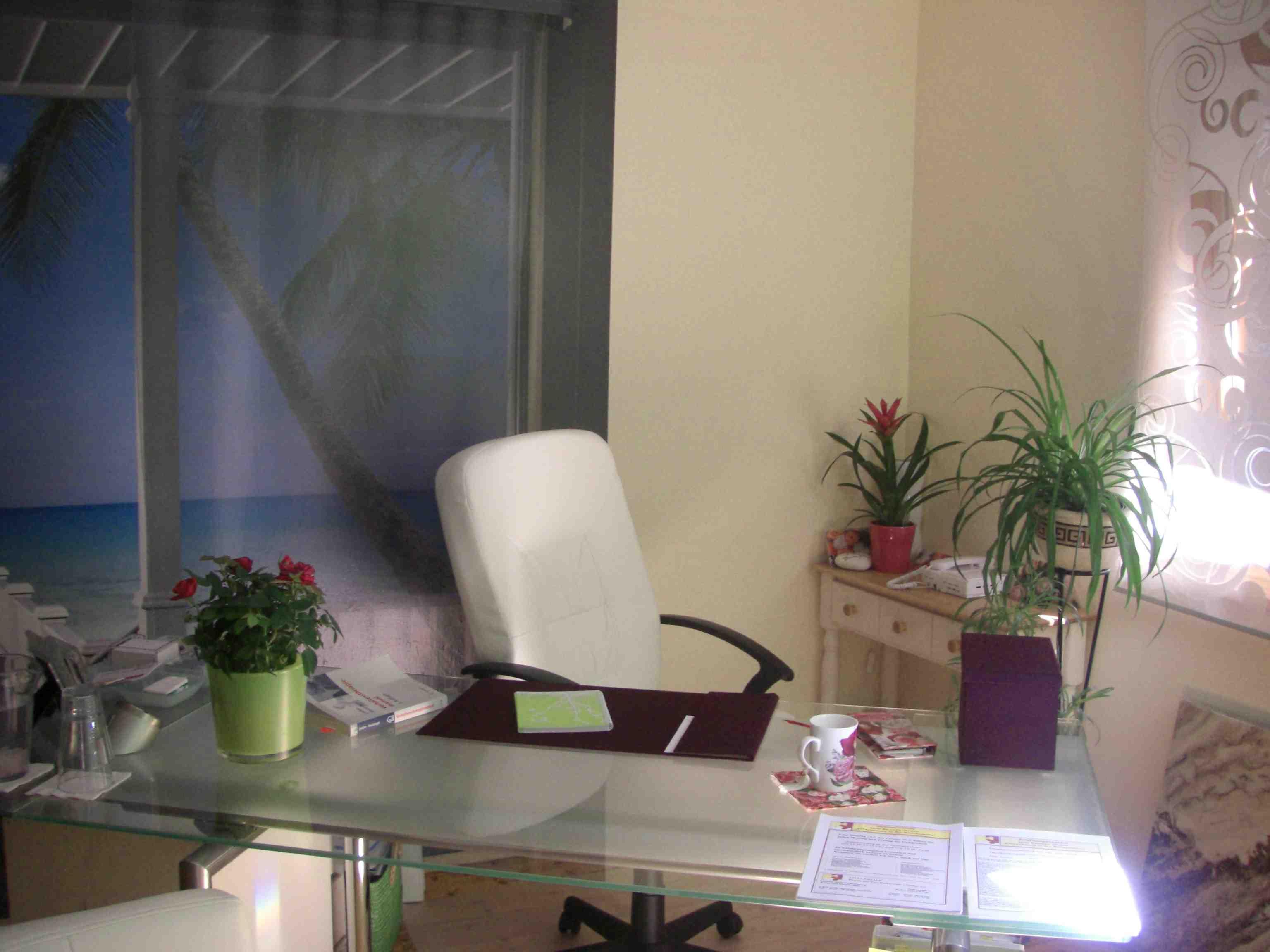 Sprechzimmer in Hypnosepraxis-Lauf, Praxis-Freier